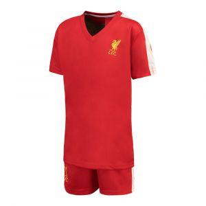 Liverpool Voetbaltenue Virgil van Dijk Kids